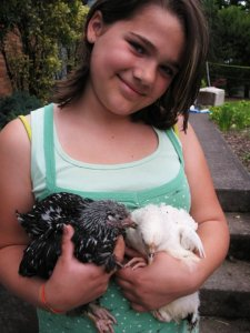 Jordan with some of 'her' chicks that later became MINE.