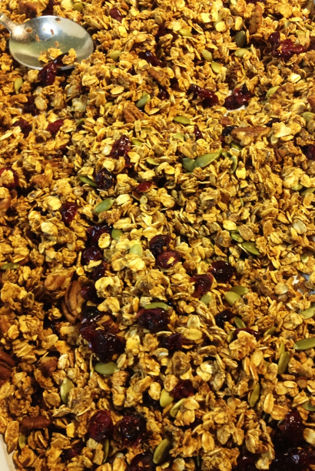 Pumpkin Granola Close Up | City Girl Farming