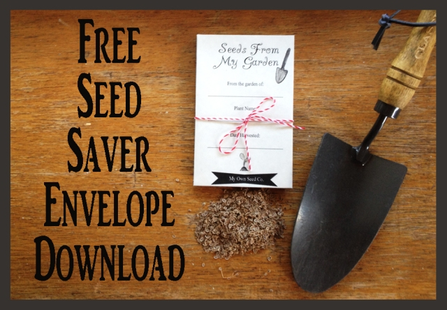 Free Seed Packet Download for saving your own seeds | City Girl Farming